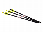 "16"" Quill Illuminated Carbon Bolts x 3"